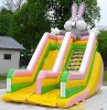 2010 Inflatable Slides