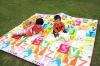2011 factory direct sale convenient to carry PE cotton picnic plastic mat