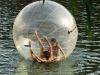 2012 Inflatable Water Walker
