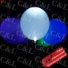Celebration LED Light Balloon