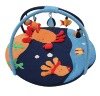 Crab kids Play Gym and playplace