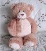 Custom Teddy Bear Plush Stuffed Animal