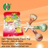 Double Flavor Pop / lollipop / fruity / hard candy / sweet