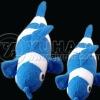 Fish Bath toy