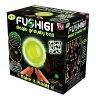 Fushigi Magic Gravity Ball GLOWS IN THE DARK