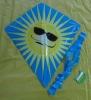 PE kite,promotional kite,children kite