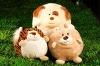 Plush Toy Animal
