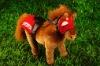 Plush Toys Horse