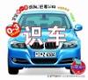 Renel PRP100 Talking Pen Book/Recognize Car