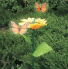 Solar Flowery Butterfly