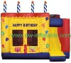 bouncy castle,inflatable bouncer,inflatable castle