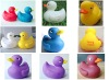 duck toy-yellow floating bath duck gift
