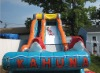 fabulous inflatable water slide at low price