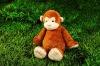 fashion animal plush cartoon monkey