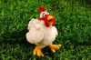 fashion animal plush chicken