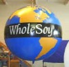 hot sale ball,sky balloon,jumping ball