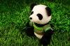 hot sale  plush stuffed toy panda 2011