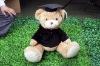 lovely  plush stuffed cartoon bear