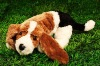 lovely plush stuffed lifelike dog