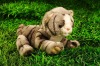 lovely plush stuffed lifelike tiger