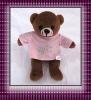 lovely teddy bear plush toy