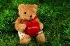plush teddy bear fabric animal baby rag doll with cloth