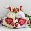 plush teddy bear rabbit with red heart valentine plush toys heart plush love rabbit plush gummy bear