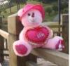 plush teddy bear with the pillow