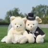 plush wedding bear