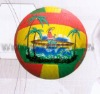 sports ball(C-V001)