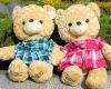 teddy,china toy,teddy bears,